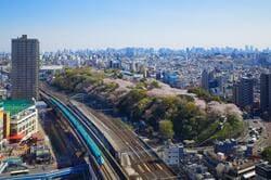飛鳥山の満開の桜と新幹線(出典:PIXTA)