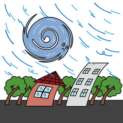 台風 保険の対象