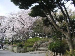 東急大井町線の戸越公園