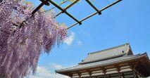 a足立区の「新築マンション人気ランキング」綾瀬、北綾瀬、竹の塚、亀有、西新井など、注目エリアのおすすめ物件は?