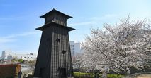 a江戸川区の「新築マンション人気ランキング」小岩、葛西、西葛西、瑞江、船堀など、注目エリアのおすすめ物件は?