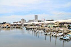 船橋市の船橋漁港
