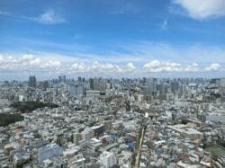 「シティタワー武蔵小山」のスカイラウンジからの景色(都心方面)