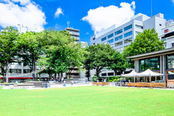 豊島区内の主要地域の特徴・主要施設・町名