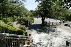 飛鳥山公園(出典:PIXTA)