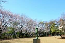 埼玉県戸田市の風景 後谷公園