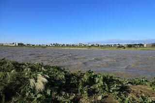 多摩川氾濫 二子玉川周辺
