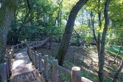 朝霞市 滝の根公園